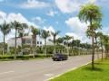 儋州市斥资2500万新建改建市区道路园林绿化