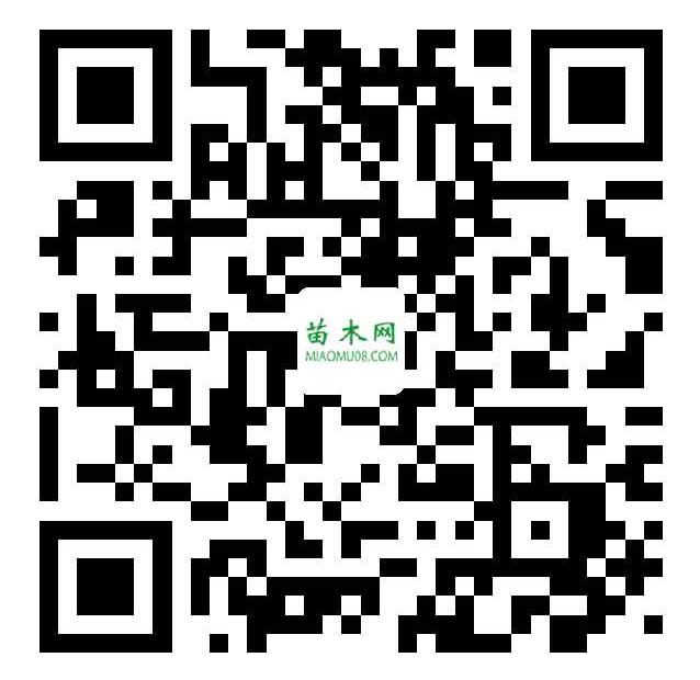 QQ图片20200909174231
